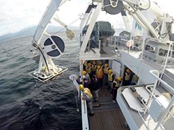 NORPACネットによるプランクトン採集実習