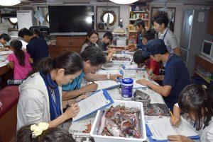 公開講座「親子で冒険!かごしまの海2017」を開催しました