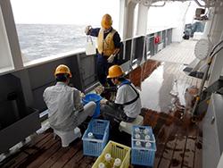 かごしま丸が東京海洋大学と愛媛大学の学生を対象とした共同利用乗船実習を実施しました