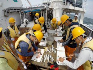 かごしま丸が日本大学の学生を対象とした共同利用乗船実習を実施しました