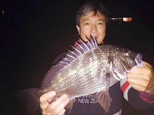 投げ釣りにきたクロダイ。キビレも同様に釣れます