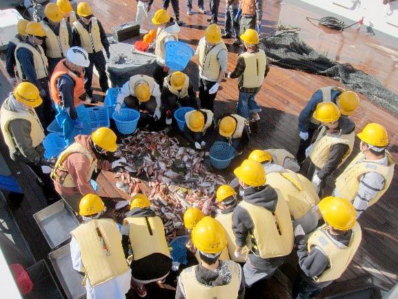 かごしま丸が宮崎大学の学生を対象とした共同利用乗船実習を実施しました